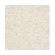 Striking Option in Blonde Oak - Carpet by Mohawk Flooring