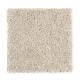 Fan Club in Birch - Carpet by Mohawk Flooring