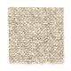 Le Havre II in Soft Sage - Carpet by Mohawk Flooring