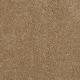 Enhanced Beauty in Campfire - Carpet by Mohawk Flooring