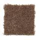 Seaboard in Rootbeer - Carpet by Mohawk Flooring