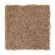 Sweet Reflection in Rich Maple - Carpet by Mohawk Flooring