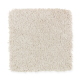 Elegant Appeal I in Haze - Carpet by Mohawk Flooring
