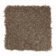 Edgewood Estates in Burlap - Carpet by Mohawk Flooring