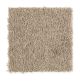 Fan Club in Music Box - Carpet by Mohawk Flooring