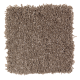 Tranquil View in Sapling - Carpet by Mohawk Flooring