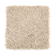 Style Objective in Thatched Straw - Carpet by Mohawk Flooring