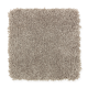 Beautiful Desire II in Tomorrow's Taupe - Carpet by Mohawk Flooring