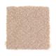 Intriguing Design in Moonbeam - Carpet by Mohawk Flooring