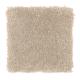 Homefront II in Light Antique - Carpet by Mohawk Flooring