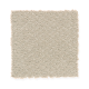 Soft Cheer in Shimmer - Carpet by Mohawk Flooring