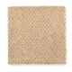 Calming Nature in Buttercream - Carpet by Mohawk Flooring