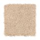 Light Reputation II in Oakridge - Carpet by Mohawk Flooring
