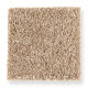 Vibrant Approach in Golden Bisque - Carpet by Mohawk Flooring