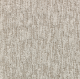 Brushed Quality in Illusion - Carpet by Mohawk Flooring