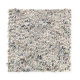 Pennington Park in Desert MIX - Carpet by Mohawk Flooring