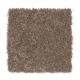 Common Values I in Instant Mocha - Carpet by Mohawk Flooring