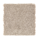 Benson Park in Brushed Suede - Carpet by Mohawk Flooring