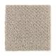 Canon Gate in Legend - Carpet by Mohawk Flooring