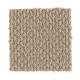 Domestic Bliss in Oat Cake - Carpet by Mohawk Flooring
