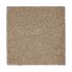 Awaited Delight in Tudor Brown - Carpet by Mohawk Flooring