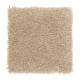 Homefront II in Sandcastle - Carpet by Mohawk Flooring