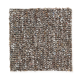 Memorabilia in Yosemite Range - Carpet by Mohawk Flooring
