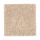 True Elegance II in Soft Suede - Carpet by Mohawk Flooring