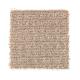 Design Solutions in Gentle Doe - Carpet by Mohawk Flooring