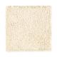 True Elegance II in Joyful Prelude - Carpet by Mohawk Flooring