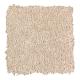 Graceful Glamour in Masonry - Carpet by Mohawk Flooring