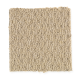 Smartly Chosen in Vanilla Bean - Carpet by Mohawk Flooring