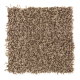 Soft Whisper I in Brown Sugar - Carpet by Mohawk Flooring