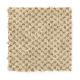 Unification in Aspen Bark - Carpet by Mohawk Flooring