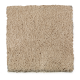 Ideal Home in Buff - Carpet by Mohawk Flooring