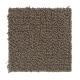 Romance in Italian Leather - Carpet by Mohawk Flooring