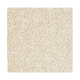 Striking Option in Mission - Carpet by Mohawk Flooring