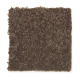 Common Values I in Turkish Coffee - Carpet by Mohawk Flooring
