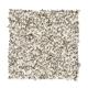 Baycliff in Raw Silk - Carpet by Mohawk Flooring