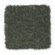Edgewood Estates in New Garden - Carpet by Mohawk Flooring
