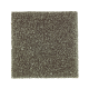Nature's Appeal I in Pine Needle - Carpet by Mohawk Flooring