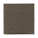 Naturally Elegant in Dried Peat - Carpet by Mohawk Flooring
