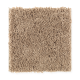 Living Legacy in Rich Maple - Carpet by Mohawk Flooring