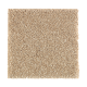 Nature's Appeal II in Natural Grain - Carpet by Mohawk Flooring