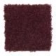 Benson Park in Bordeaux - Carpet by Mohawk Flooring