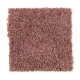 Living Legacy in Pink Rose - Carpet by Mohawk Flooring