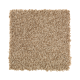 Tonal Chic I in Wild Cattail - Carpet by Mohawk Flooring