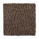 Lasting Outlook in Nutmeg Swirl - Carpet by Mohawk Flooring