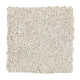 Graceful Glamour in Antique Ivory - Carpet by Mohawk Flooring
