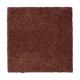 Awaited Delight in Tibetan - Carpet by Mohawk Flooring